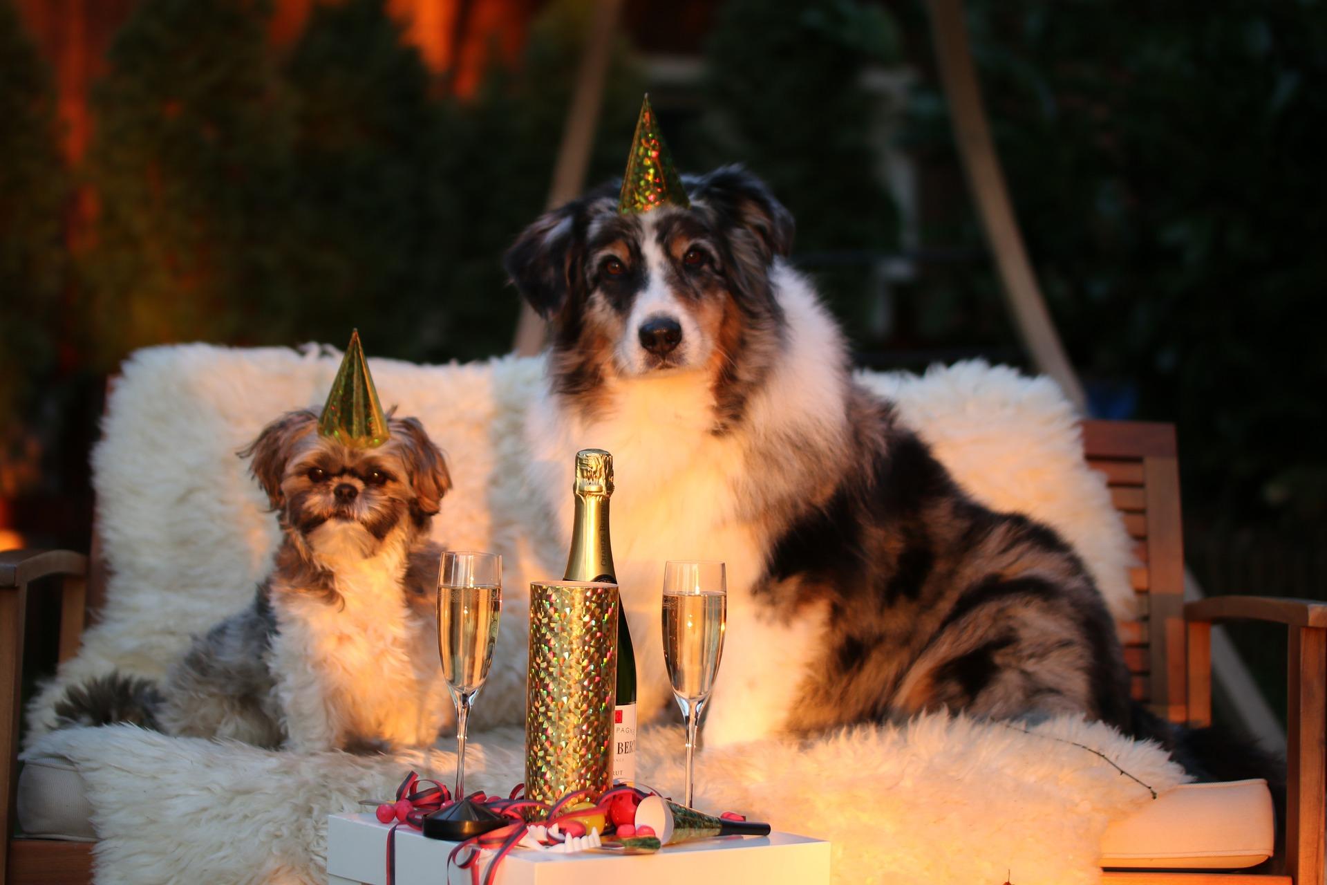 Nyåret firas med prissänkning på böcker!